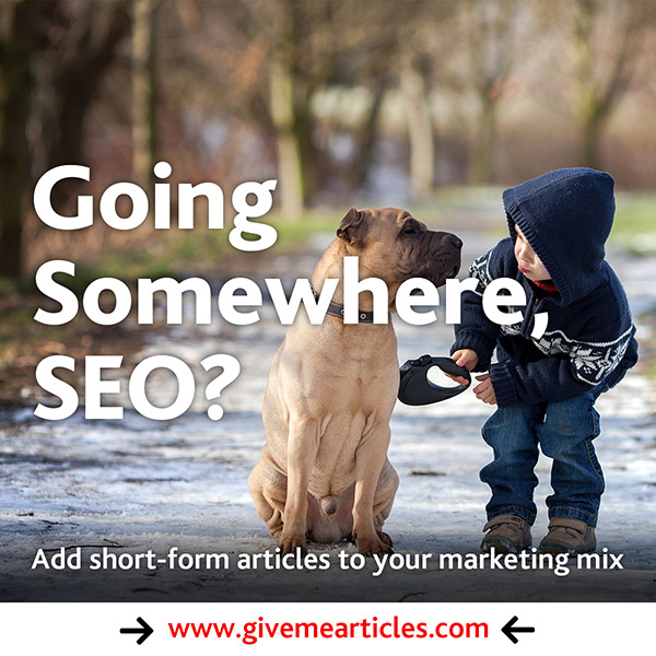 Going Somewhere SEO adventure by give me articles