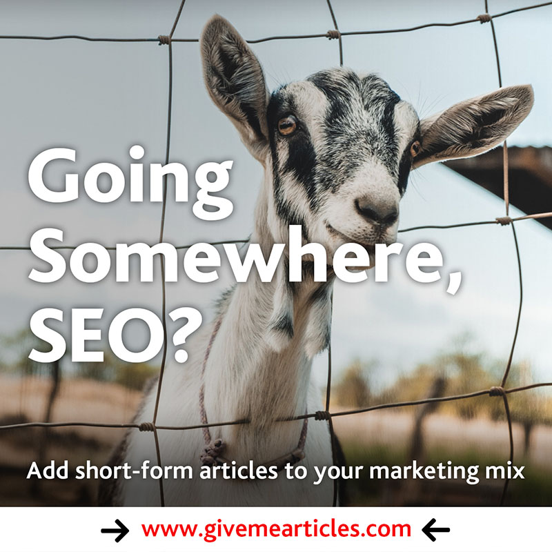 geo-targeting by Give Me Articles
