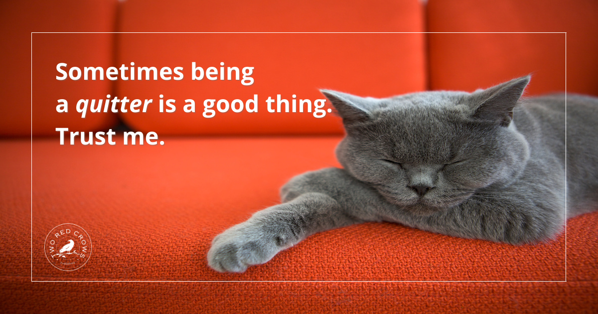 Sleeping cat: Quitting might just be the best content marketing strategy